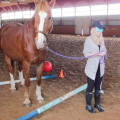 Equine Assisted Learning Program